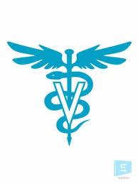 Pharmacist Logo Sticker For Car Vinyl Decal Sign Ever Online Sticker Market
