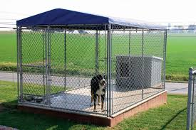 The Many Uses Of Chain Link Dog Kennels And Issues You Should Avoid Dogsrealty Com