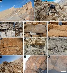 outcrop photographs showing