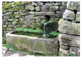 rustic beauty of antique stone troughs