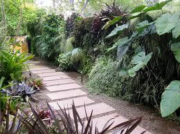 creating a tropical garden