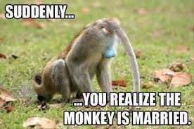 funny monkey puns