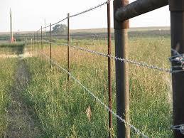 Steel Fencing T Down Trailer Sales Ltd