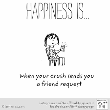 happiness is when your crush sends you a friend request