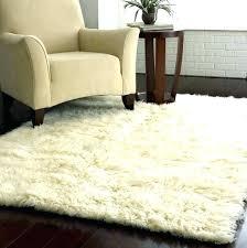 area rugs home goods matthewsaar co