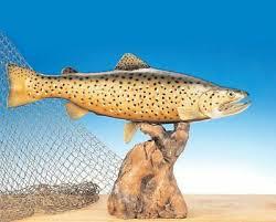 taxidermy fiberglass fish
