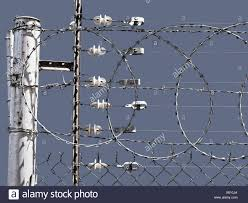 Close Up Of Perimeter Security Barbed Wire And Electric Fence Stock Photo Alamy