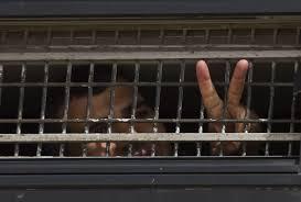 Carceri israeliane, proteste e sciopero della fame dei detenuti ...