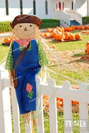 Happy Scarecrow Sitting On Fence With Pumpkin Patch In The Background At Church Stock Photo Picture And Low Budget Royalty Free Image Pic Esy 033576148 Agefotostock