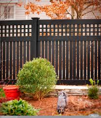 Benefits Of Aluminum Fencing Artistic Fence Kutztown Pa