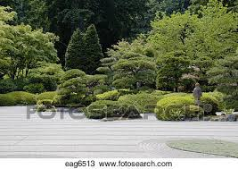 raked sand and manicured trees plants