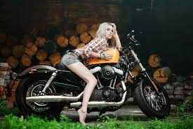harley davidson wallpaper bikes and