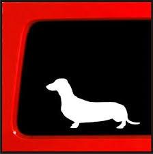 Amazon Com Sticker Connection Dachshund Wiener Dog Bumper Sticker Decal For Car Truck Window Laptop 6 White Automotive