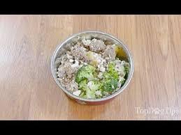 homemade dog food for pancreais