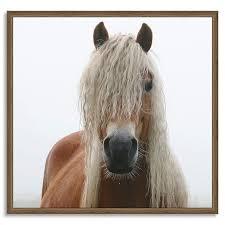 framed prints horses