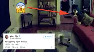 The latest update in this ongoing Twitter ghost story is the creepiest yet
