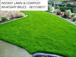 instant lawns compost and topsoil