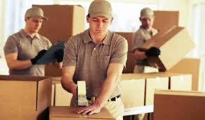 Types of Services Provided by Professional Removalists - Better Removalists Gold Coast