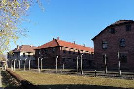auschwitz and krakow one day tour