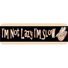 10in X 3in Im Not Lazy Im Slow Sloth Vinyl Bumper Sticker Car Decal Window Stickers Decals Walmart Com Walmart Com
