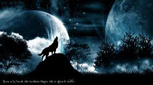 wallpapers for black wolf backgrounds