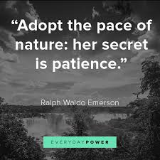 nature quotes about mother earth s beauty