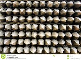 Wooden Fence Posts Stock Photo Image Of Lumber Textured 1231100