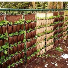 26 Easy Diy Ideas For Creating An Urban Garden Extra Space Storage