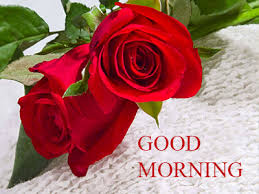 good morning romantic rose free