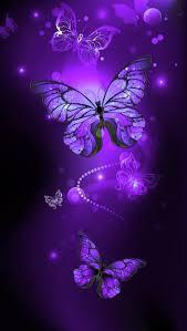 خلفيات عالية الوضوح ل فراشات Butterflies فراشة حيوانات 51
