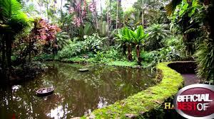 hawaii tropical botanical garden best