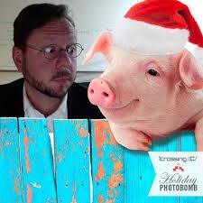 Adam Lavelle, iCrossing New York | Gatewood, Animals, Holiday