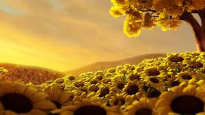 459 sunflower hd wallpapers