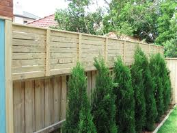 Fence Extensions For Privacy Fences Ideas Backyard Fences Privacy Fence Screen Backyard Privacy