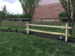 Split Rail Fence To Train Grape Vine On Backyard Fences Backyard Fence Landscaping