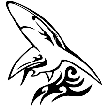 2020 16 14 4cm This Is A Shark Tribal Die Cut Vinyl Sticker Or Decal Great For Car Vinyl Sticker Unique Car Accessories From Xymy777 1 61 Dhgate Com
