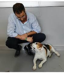 Giornata mondiale del cane in ufficio • #CosaNonVa.it
