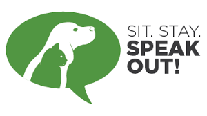 A personal and heartfelt letter from Pete Schuermann - Sit Stay Speak Out