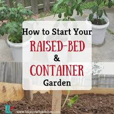 raised bed and container garden