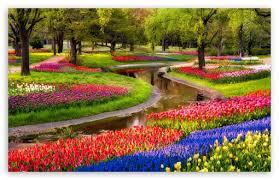 beautiful spring garden ultra hd