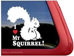 Amazon Com I Love My Squirrel Squirrel Vinyl Window Decal Sticker Automotive