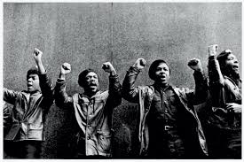 Black Panthers - History, Definition & Timeline - HISTORY