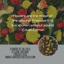 inspirational flower quotes flowers of the field las vegas