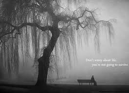 nature lonely grayscale lakes bench quotes creative