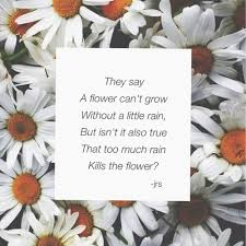 quotes about sad flowers quotes