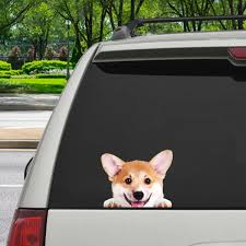 Can You See Me Now Welsh Corgi Car Door Fridge Laptop Sticker V1 Follus Com