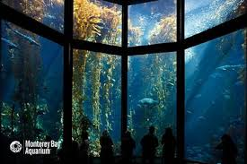 monterey bay aquarium admission ticket