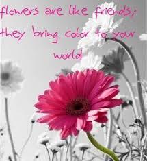 flower quotes quotesta