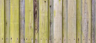 How To Clean Green Algae From Wooden Fences Fantastic Services Blog