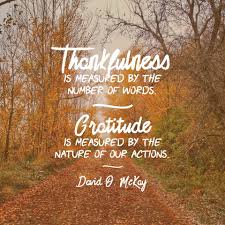thankfulness is measured by the number of our words gratitude is